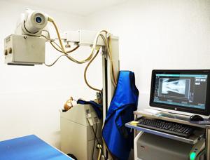 Programa de Remisión - Radiología Veterinaria Digital