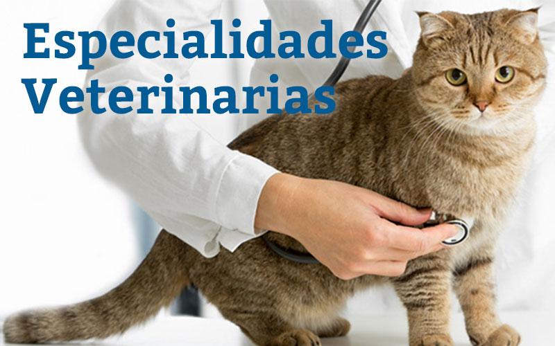 Especialidades Veterinarias